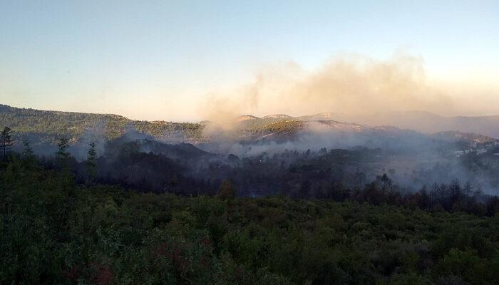 Antalya Manavgat'ta orman yangını