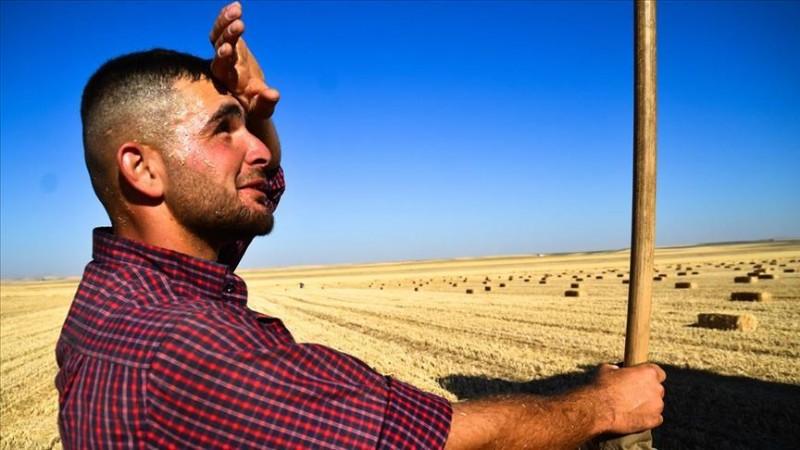 Doğu Anadolu'da sıcak hava uyarısı