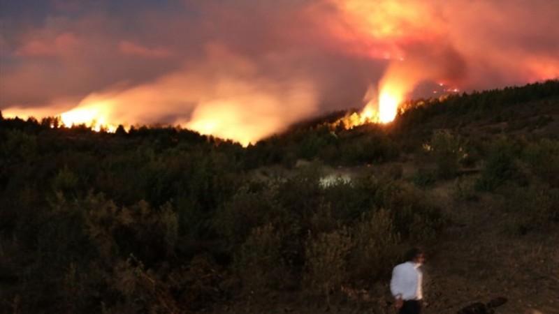 Kastamonu'ndaki orman yangını sürüyor