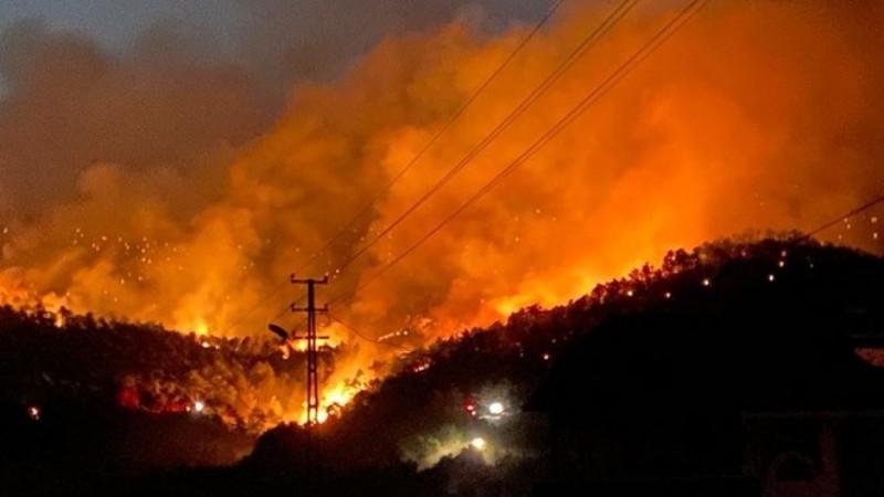 Nallıhan'da yeniden orman yangını: 2 Mahalle boşaltıldı