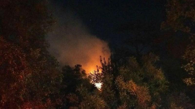 Aydos'ta orman yangını