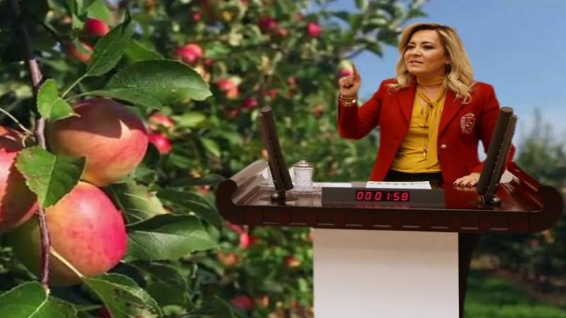 Cesur'dan iktidara: Elma dersem çık...