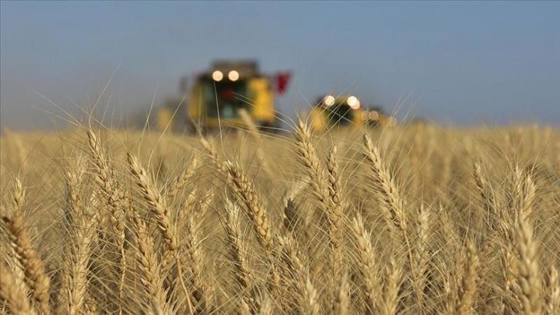 Pakdemirli: Tarımsal hasılası 2 yılda 275 milyar liraya çıktı